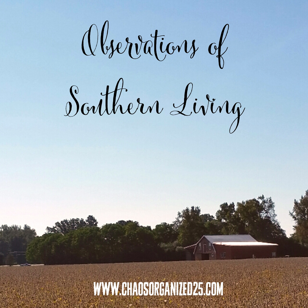 Observations of Southern Living