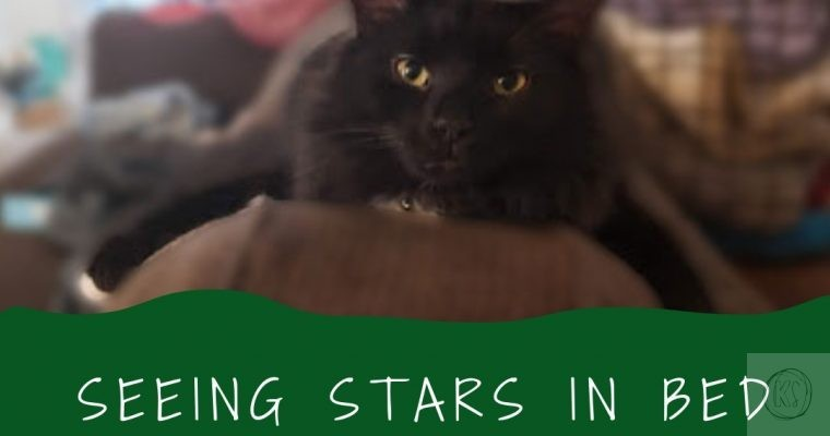 Seeing Stars In Bed